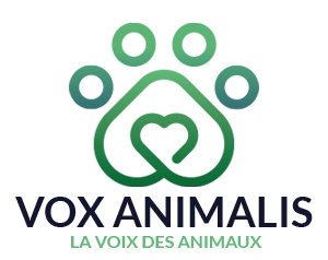 https://vox-animalis.fr/wp-content/themes/vox/img/logo.png